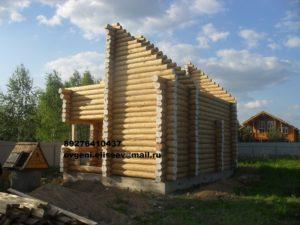 Дом из бревна (2)