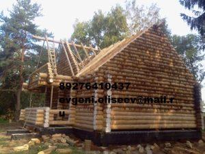 Строительство дома из бревна (1)