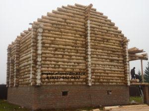 Строительство дома из бревна (3)