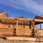 Дом из дикого сруба 8 на 10 метров в Шафторке
